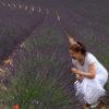 marion bad im lavendelfeld